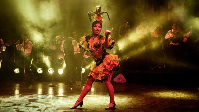 Heiße Rhythmen und exotische Schönheiten bei der Buena Vista-Show
